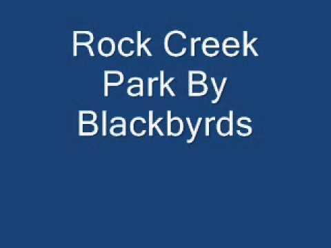 Rock Creek Park  Blackrds