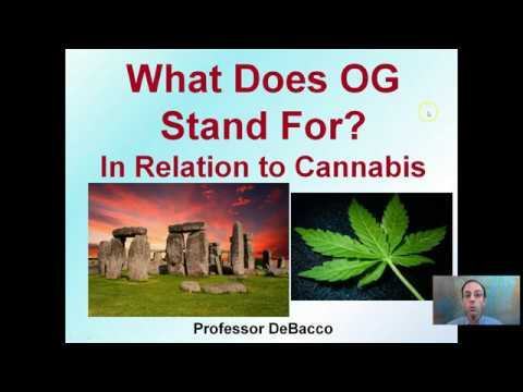 What Does OG Stand For