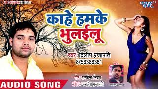 Kahe Humke Bhulailu - Ja Ae Jaan - Dilip Prajapati - Bhojpuri Hit Songs 2018 New