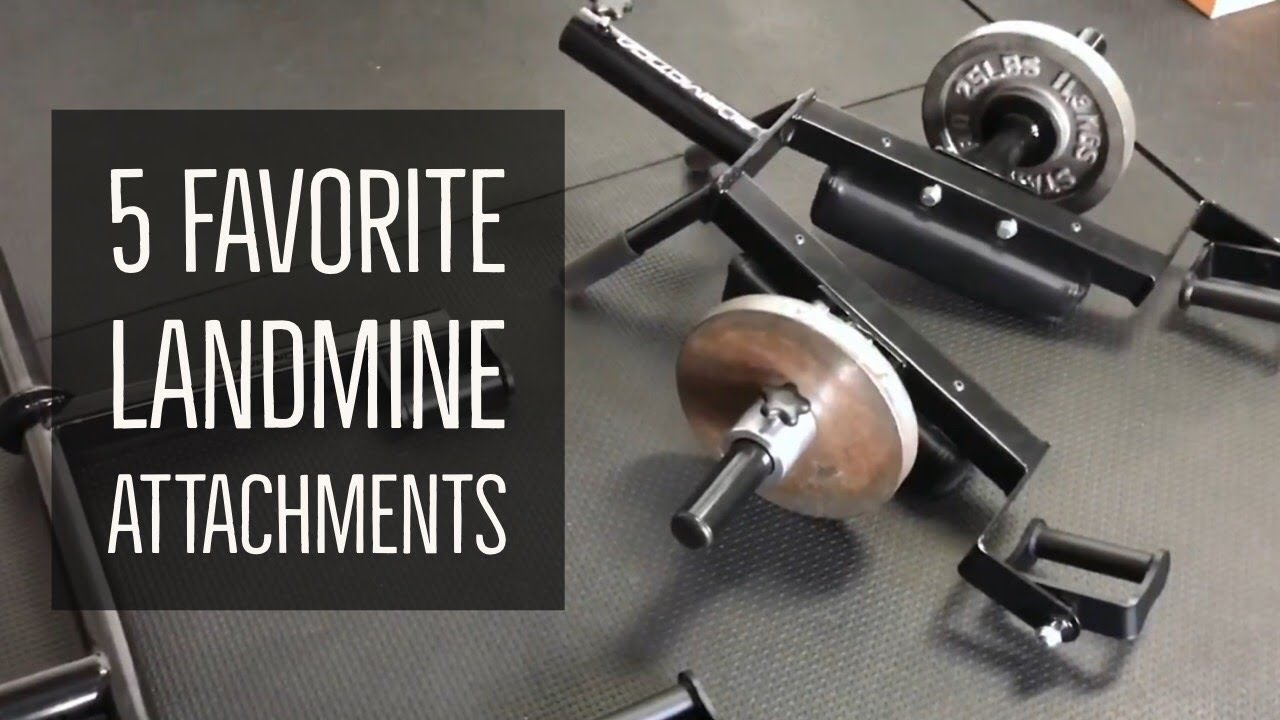 Pioneer belts review garage gym lab