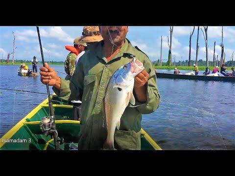 Fishing For Silver Croaker (South American )  At Mamadam - Suriname