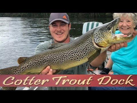 Arkansas White River Trout Fishing Report September 25, 2019