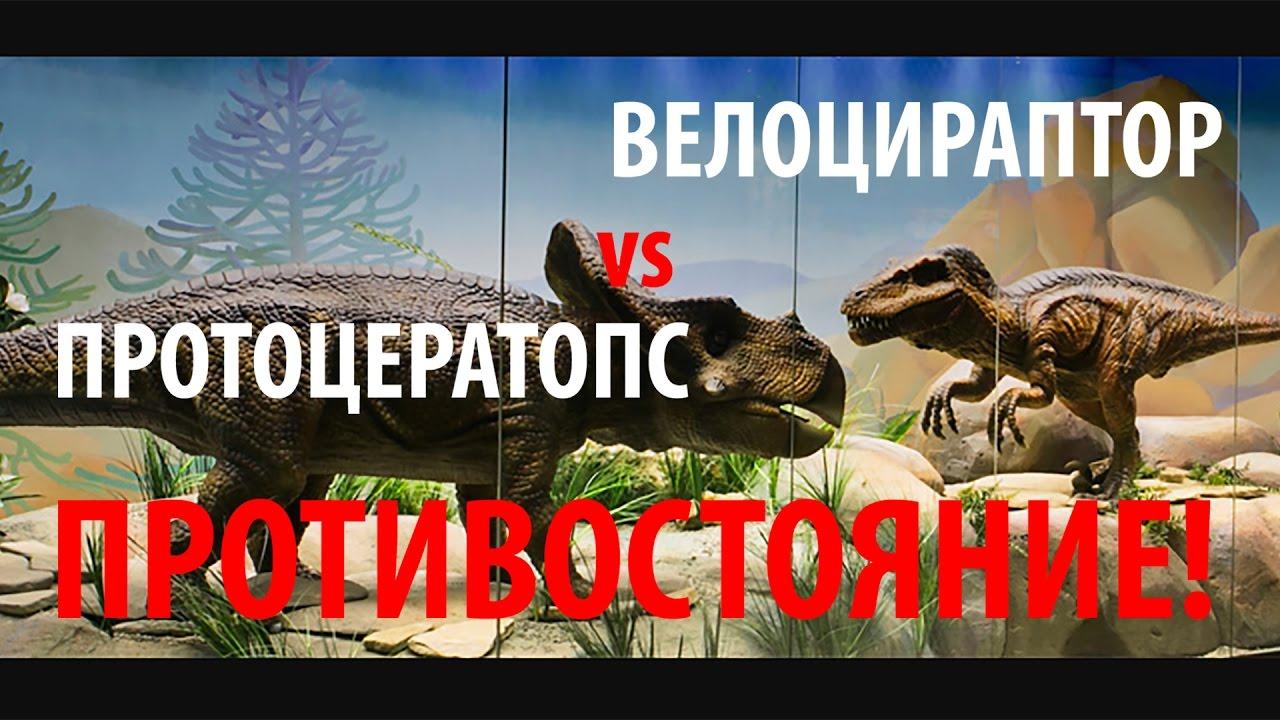 ВЕЛОЦИРАПТОР vs ПРОТОЦЕРАТОПС! Ярослав Попов | Палеонтологические истории #008