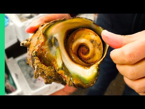 GIANT ALIEN SNAIL in JAPAN!!! Digging Deep in Tokyo's Famous Fish Markets!