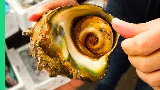 GIANT ALIEN SNAIL in JAPAN!!! Digging Deep in Tokyo\'s Famous Fish Markets!