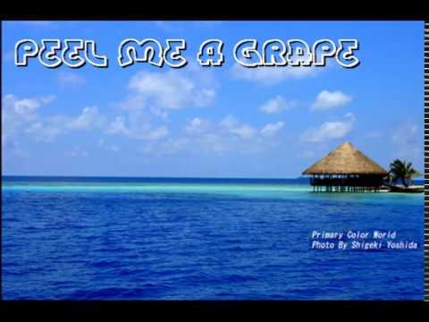 KARAOKE Peel Me A Grape - Diana Krall Lyrics(歌詞付き)