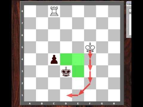 Chess Endgame: Rook vs. Pawn - Basic