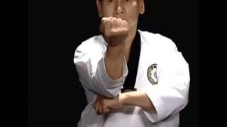 Basic Motions - CHIGI - Taekwondo Technics in English [HD]