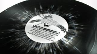 Ashes To Machines - Resistance (Ji Dru & Sandra Nkake remix)