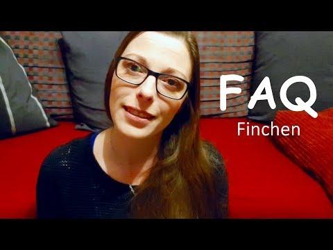 FAQ #3 Heiraten | Kanal | Meditieren | Panik | Sport |FinchensWelt