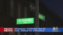 13-Year-Old Shot In Brooklyn Park