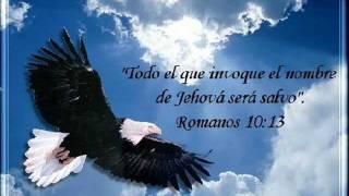 Jesus Seco Mis Lagrimas - Hector Pinilla