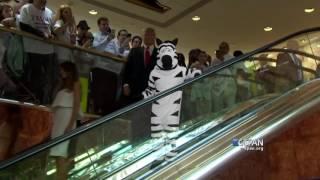 Trump Grand Escalator Entrance #JustAddZebras