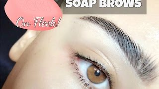 PERFECT SOAP BROW TUTORIAL | EASY + AFFORDABLE | 100DaysOfYoutube Day #6