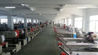 Horizontal plastic spoon packing machinery automatic flow wrapper machine,flux machine d