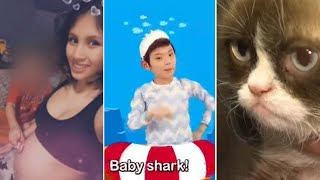 Charges in pregnant 19-year-old's death, Grumpy Cat dies, Baby Shark could save a life: The 60