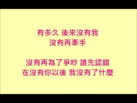 謝和弦 Feat. 張智成 在沒有你以後【歌詞版】