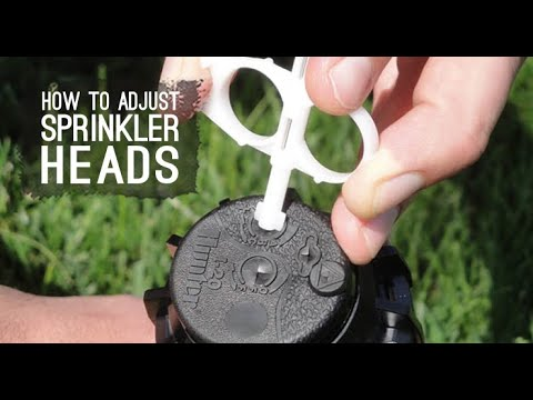 Replace Sprinkler Head  RainBird And Hunter And How To Adjust