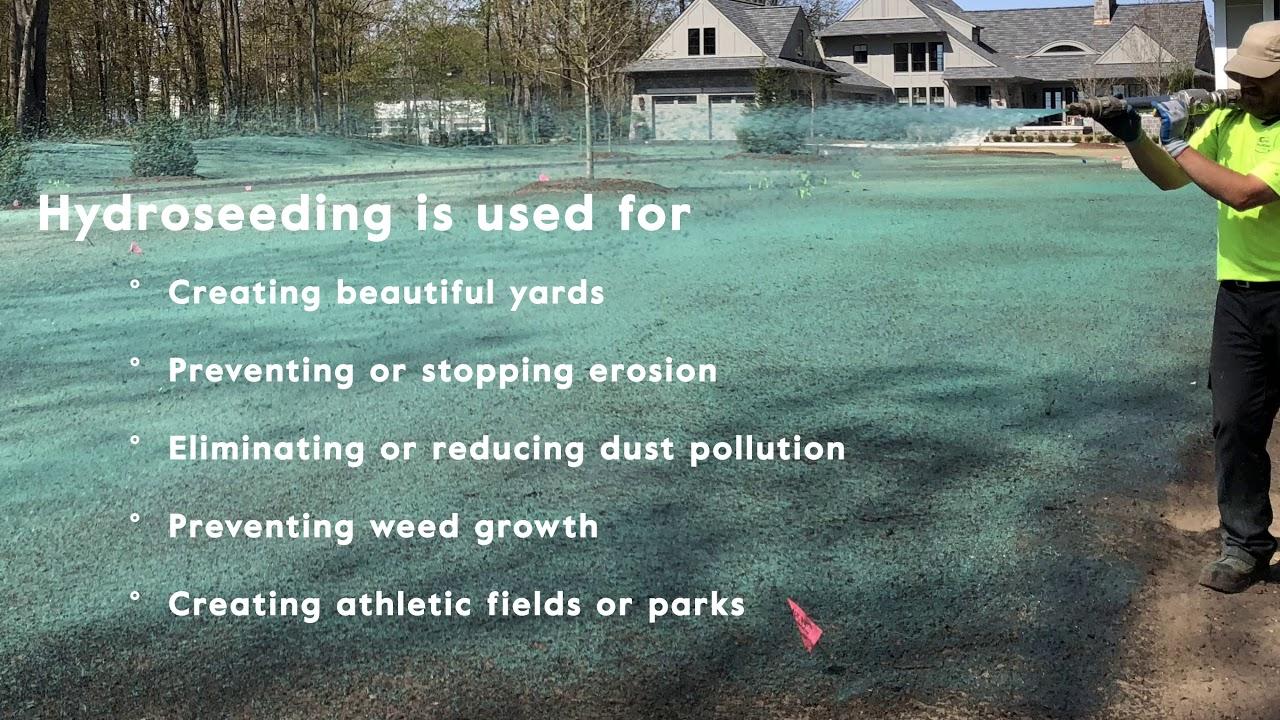 What is Hydroseeding? Hydroseeding 101 - Superior Groundcover