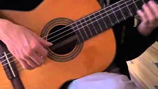 Forever - Stratovarius guitar