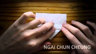 Origami Toilet Paper Heart (tutorial)