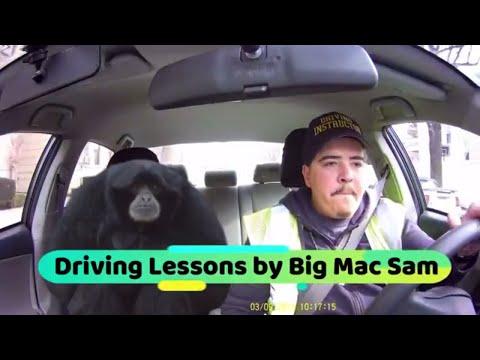 Driving Lessons by Big Mac Sam