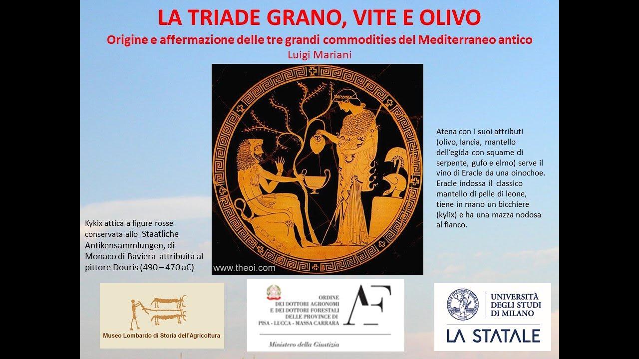 La triade mediterranea: grano, vite e olivo