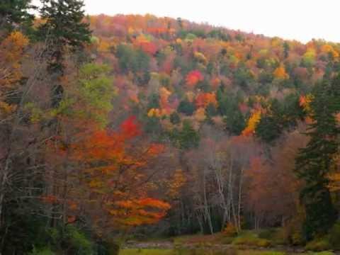 Andrea Bocelli ~ Les Feuilles Mortes (The Autumn Leaves)