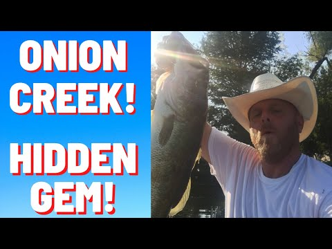 Fishing Onion Creek In Austin Texas! Hidden Gem? #fishingAustinTexas #fishingOnionCreek