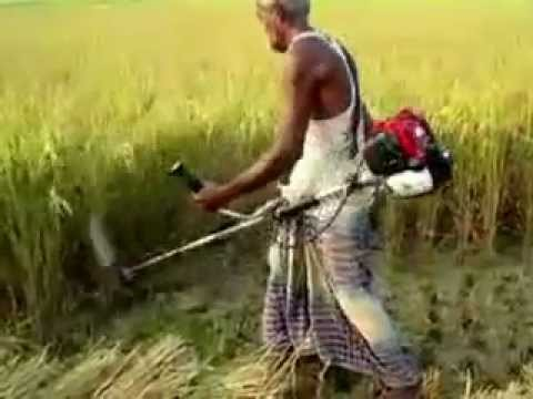 Paddy Rice Cutter ধান কাটার মেশিন