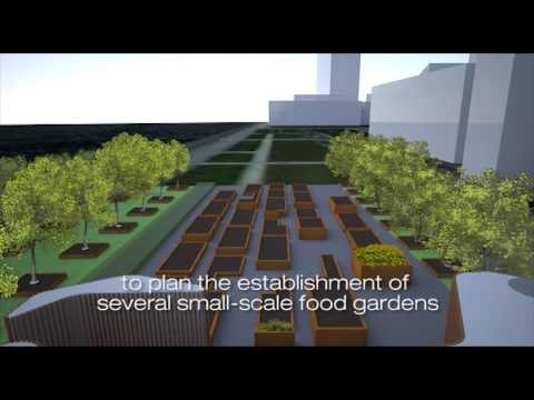 UN Food Gardens