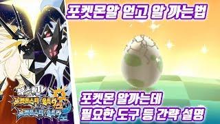 포켓몬스터 울트라 썬 문 공략 - 포켓몬 알 얻고 알까기 (포켓몬스터 울트라썬문 공략 / Pokémon Ultra Sun·Moon)