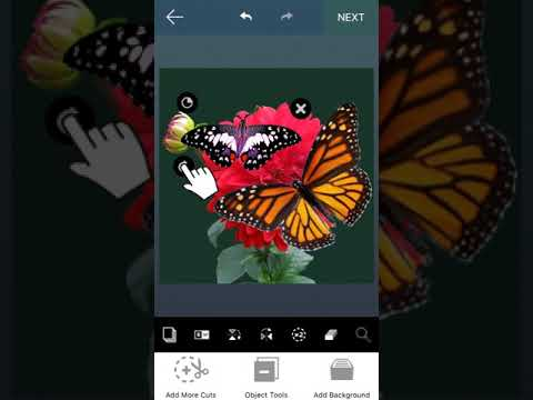 Best Cut and Paste app on iPhone