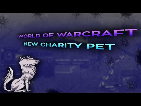 New World of Warcraft pet proceeds will be donated to charity