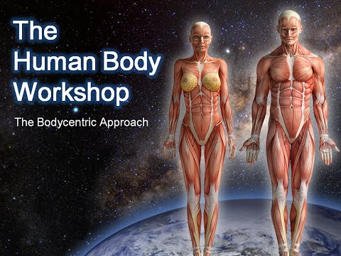 The Human Body Workshop