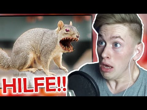 Try NOT To Get Scared!! (EXTREME CHALLENGE) [impossible]   El Margo