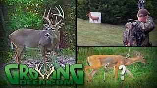 Deer Hunting: Changes for the Season (#356) @GrowingDeer.tv