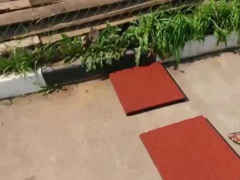 Укладка дорожки из резиновой плитки от Садового центра Аллея Нижний Новгород