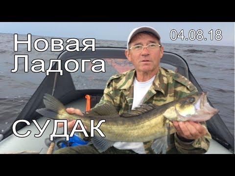 Новая Ладога отчёт за 04.08.2018