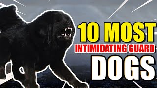 10 MOST INTIMIDATING GUARD DOGS