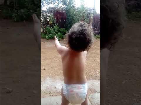 Criança nordestina quando vê chuva paullinho