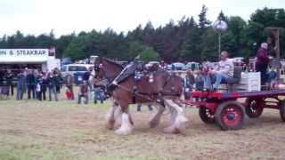 Heavy Horses Vintage Agricultural Machinery Club Rally Strathmiglo Fife Scotland