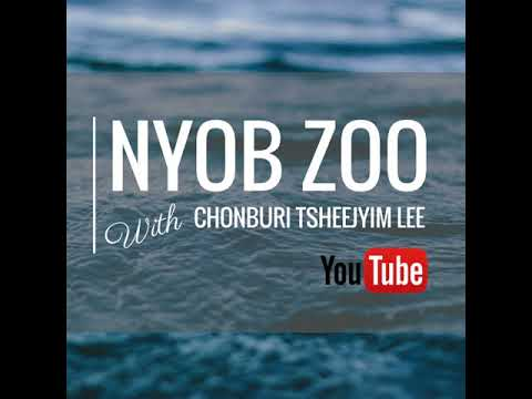 Nyob Zoo With Chonburi TsheejYim Lee Ep. 1 06/14/2018 thumbnail