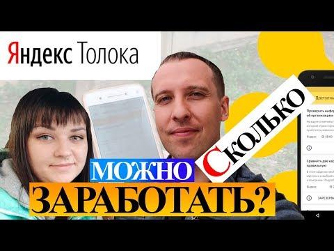 Яндекс Толока. Реальный отзыв - сколько можно заработать? Заработок без вложений
