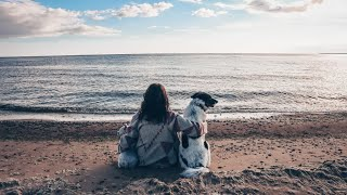 HYGGE CAMP | Финский залив | душевный отдых с собаками |