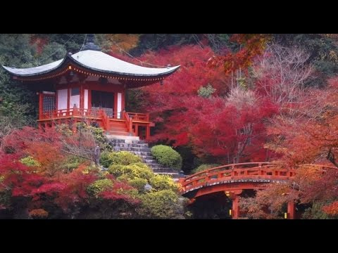 Music of Tao ~ Mind, Body & Soul ~ Buddhist meditation Music ~ Zen Garden ~ Harvey Summers