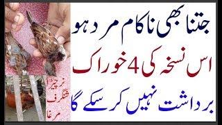 mardana taqat ka ilaj in urdu hindi 10122018