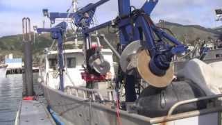 Mussel Catamaran Vessel
