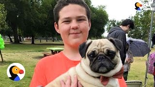 Boy With Autism Gets PUG Birthday Surprise | The Dodo