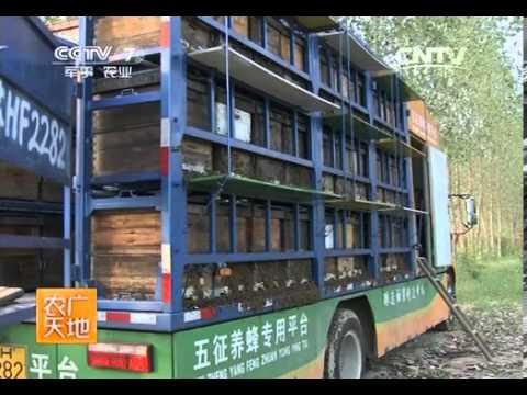 20140226 农广天地 开着房车去养蜂——养蜂专用车结构与使用